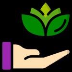 Estrategia de link building natural